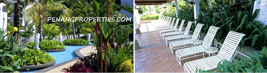 Poolside garden chairs