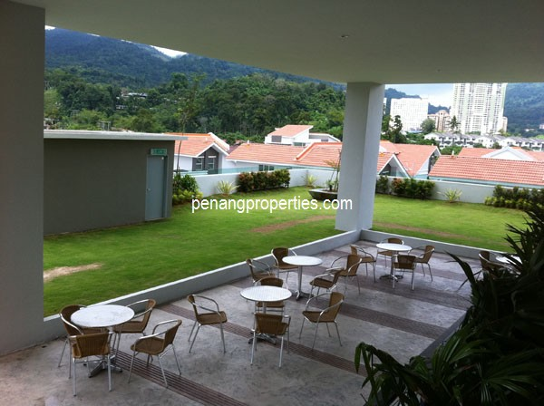 Landscaped lawn, table and chairs
